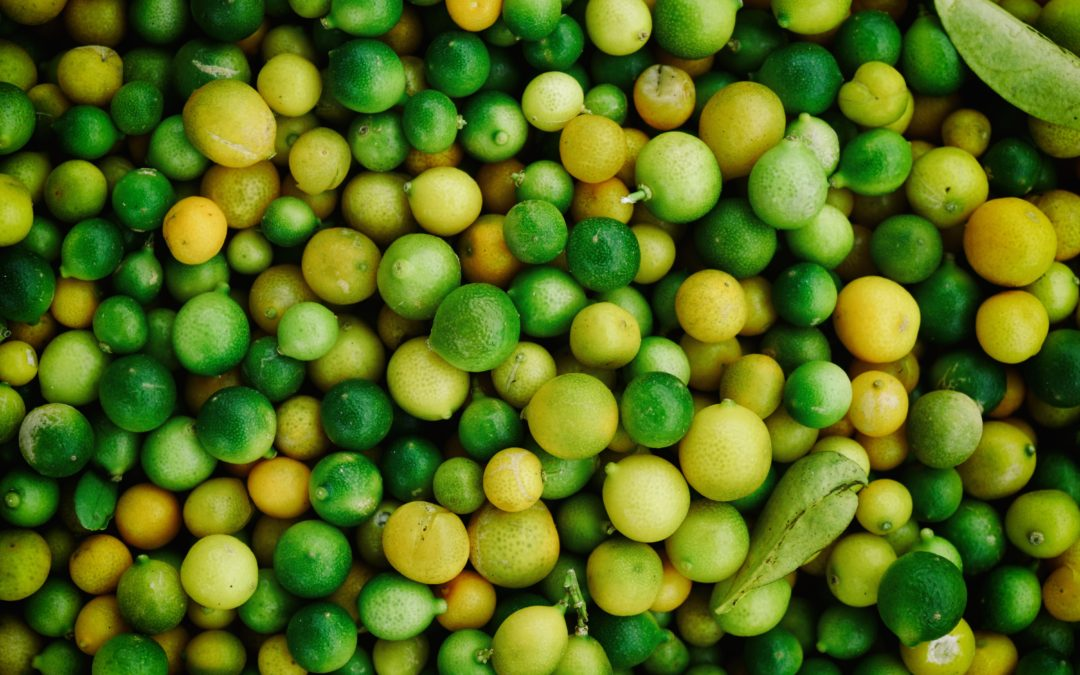 Zitrusfrüchte: Fatburnerfruit #1